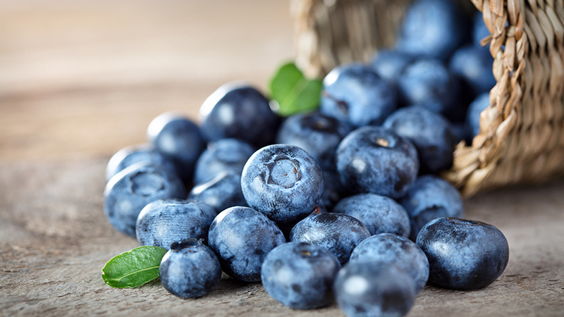 blueberries National Workplace Wellbeing Day 2018 The fruit People