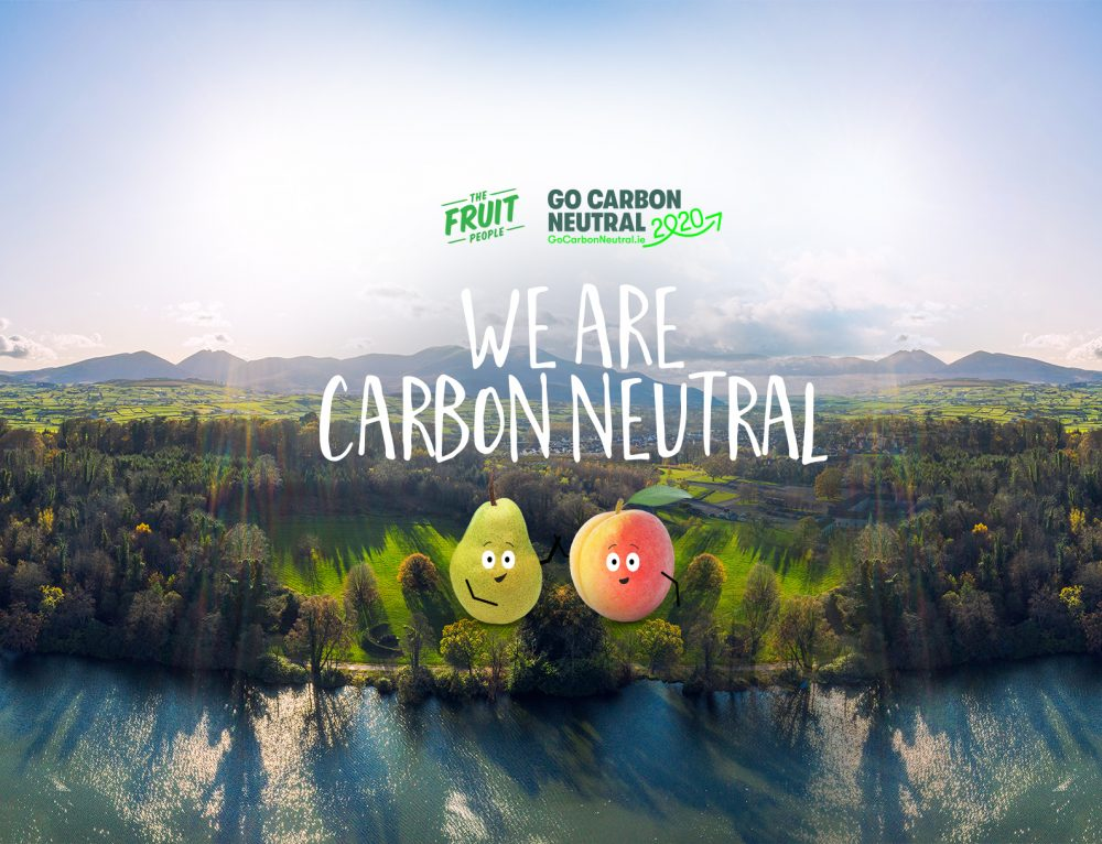 How We Became a Carbon Neutral Business